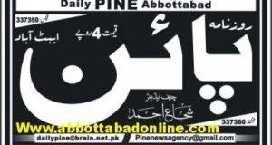 Daily Pine